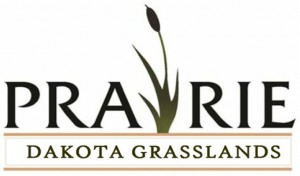 Dakota Grasslands Prairie - Native Seed Mixes - Sunmark Seeds