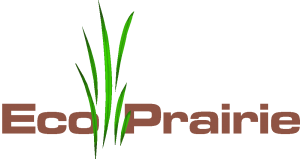 Eco Prairie - Native Seed Mixes - Sunmark Seeds