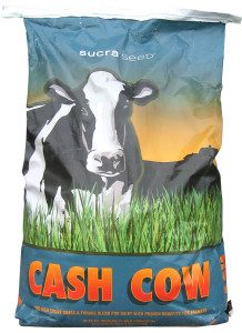 cash-cow-bag