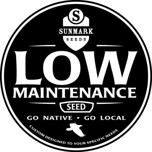 low maintenance-02